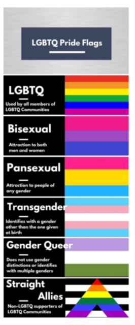 Infograph for LGBTQ Pride Flags and what they represent